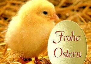 Oster in den Lindenstuben